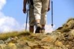 6904822-hiking